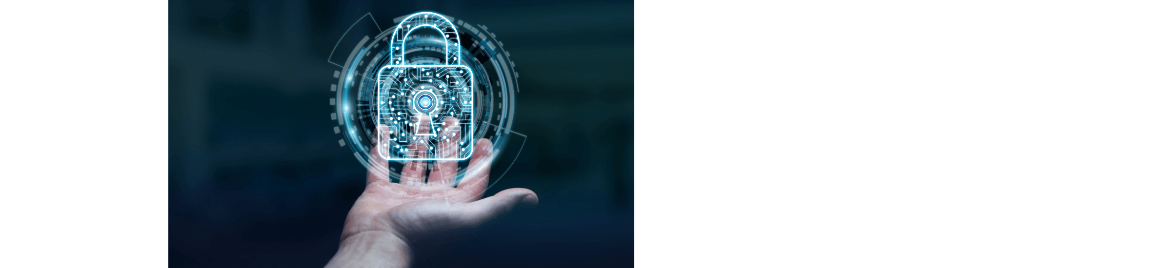 Datenschutzaudit - Mit dem Brachenexperten Renovatio GmbH